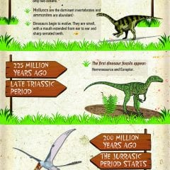 Timeline Of The Dinosaurs